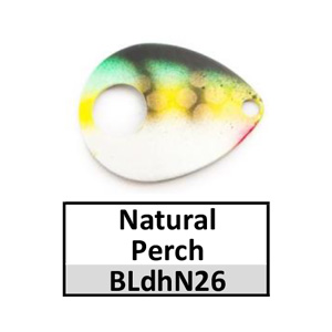 Size 5 Colorado Double Hole Custom Painted Spinner Blades – natural perch BLdhN26