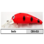 CBB-b-B16 beetle