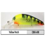 CBB-b-B8 yellow perch