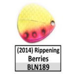 Rippening Berries