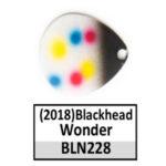 Blackhead Wonder