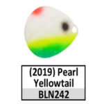 Pearl Yellowtail