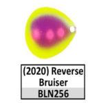 Reverse Bruiser