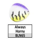 N65 Always Horny