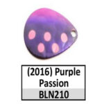 BLN210 purple passion