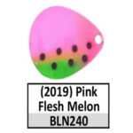 BLN240 pink flesh melon